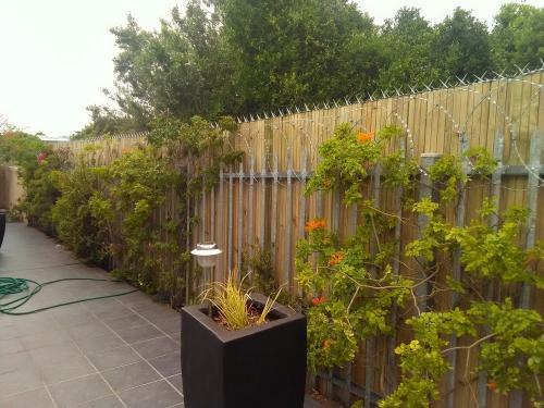 garden fencing george
